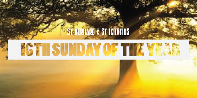 16th Sunday Of The Year