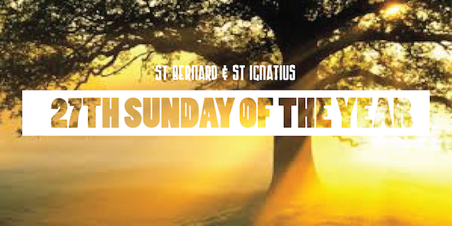 27th Sunday of the year