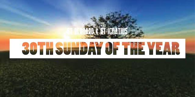 30th Sunday of the year
